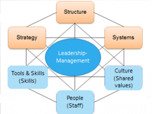 management-system-approach