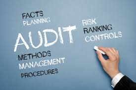 operational audits1