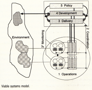 viable-system-model